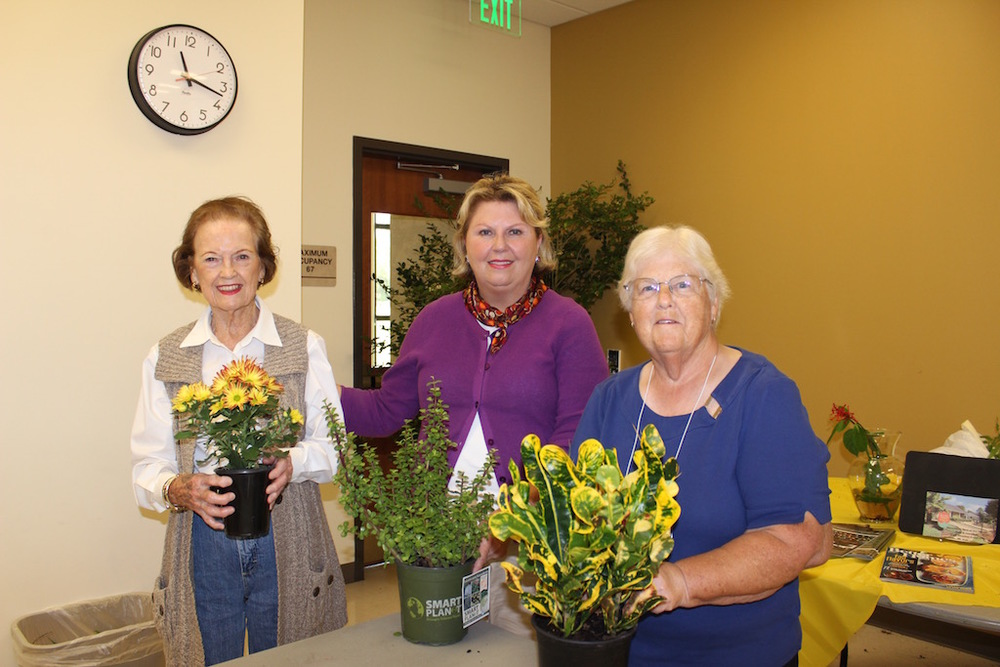 November Door Prize Winners: L-R - Virginia Moore, Barbara Thompson, Linn Wells