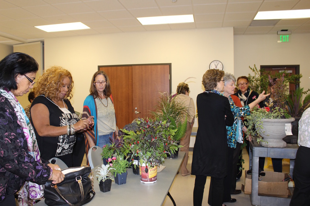 Members review plants and a variety of planting containers.