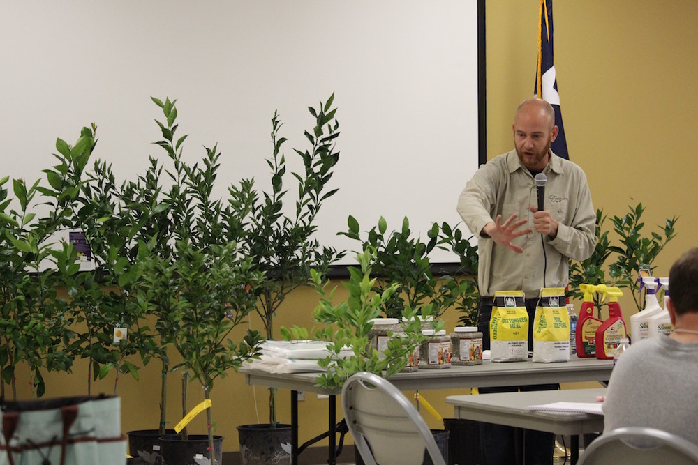 Jim Lorin from Enchanted Gardens discusses how to care for Citrus Trees planted in containers.