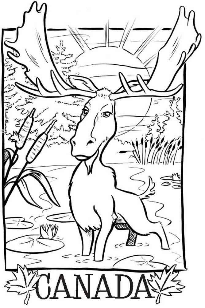 Artburn+Moose+inked+sized.jpg