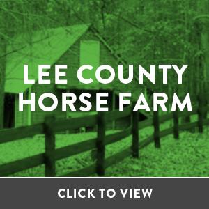 r3-horsefarm.jpg