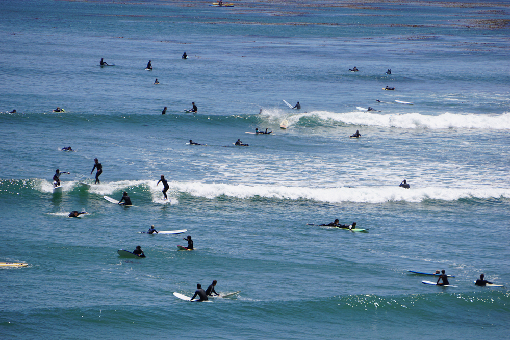All the surfers in the bright blue sea