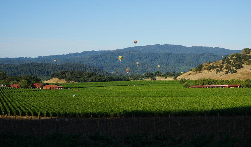 Yountville-Ballons.jpg