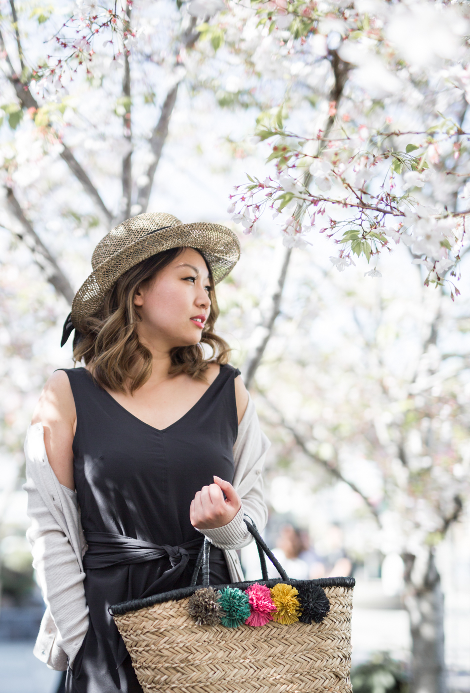 Cherry Blossoms in San Francisco | The Chic Diary