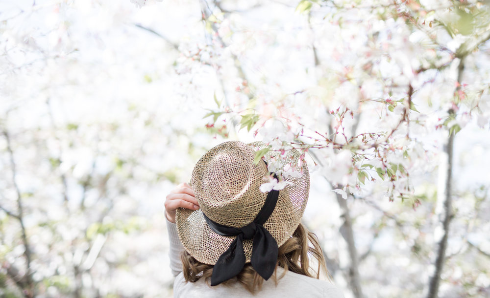 San Diego Hat Co Seagrass Gambler Hat with Chiffon Band | The Chic Diary