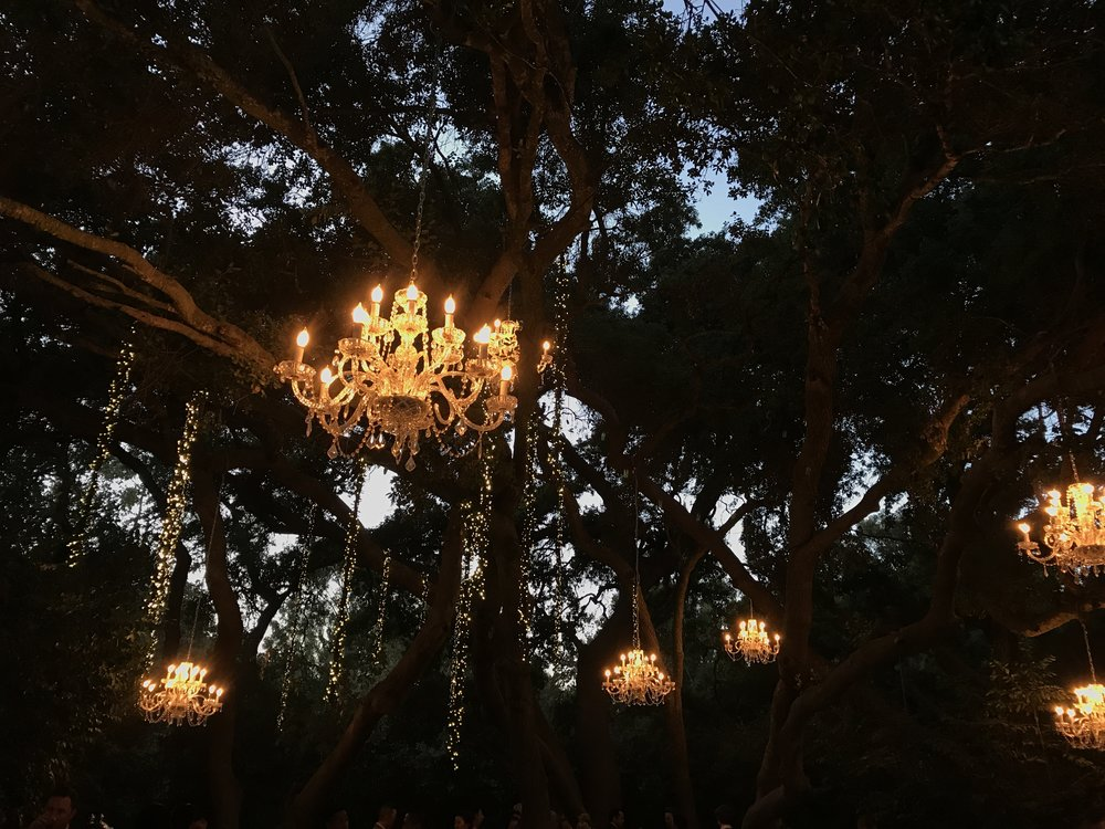 Calamigos Ranch - Chandelier Tree Lights | The Chic Diary
