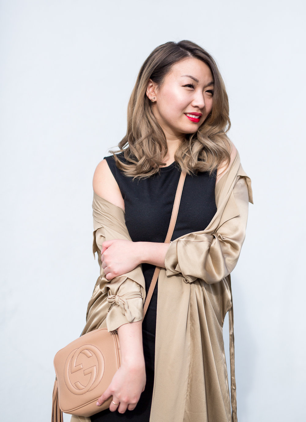 Aritzia Babaton Dress | The Chic Diary