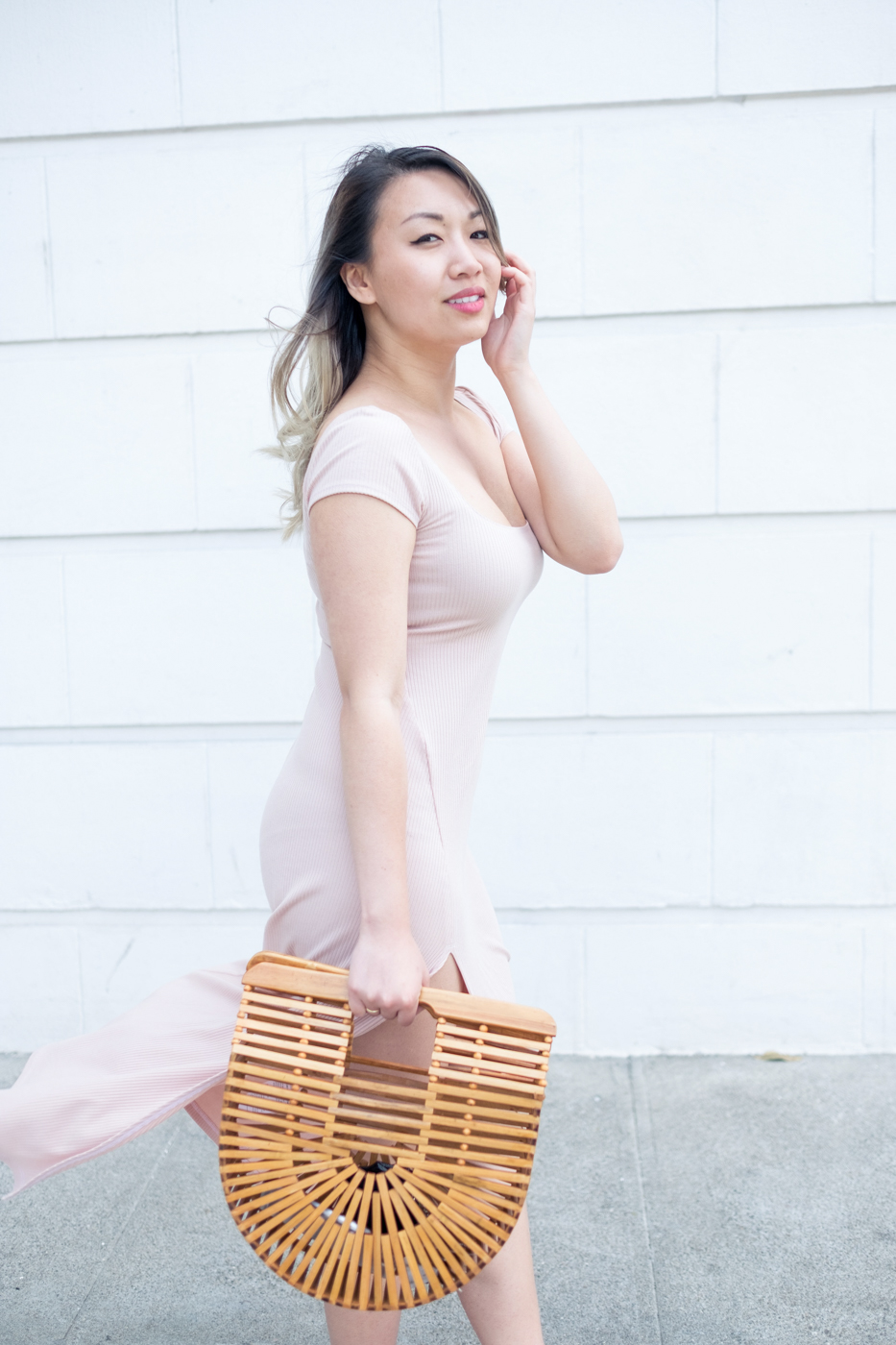 Blush Dress & Bamboo Ark Bag | The Chic Diary