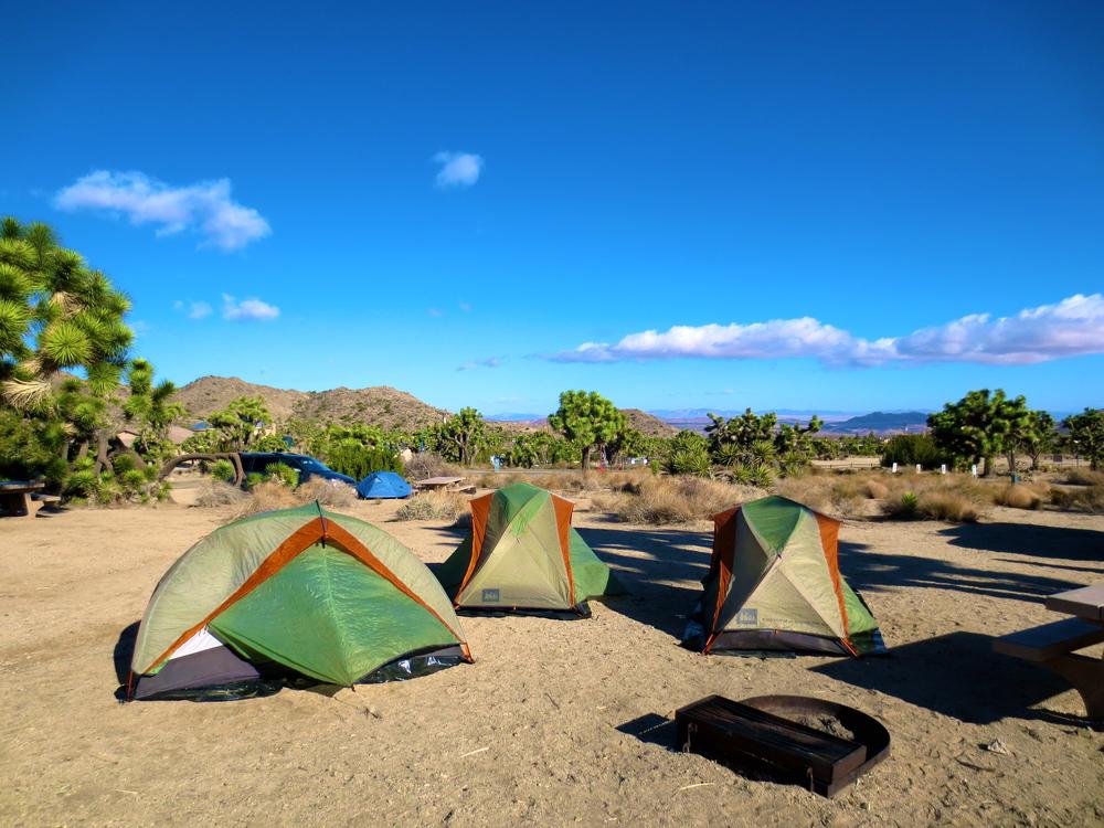 Kaci Nicole - Camping in Joshua Tree