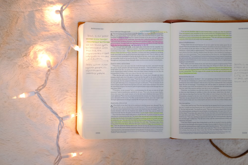 Kaci Nicole - Bible Study Resources