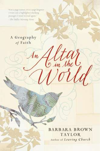 An Altar in the World - Kaci Nicole