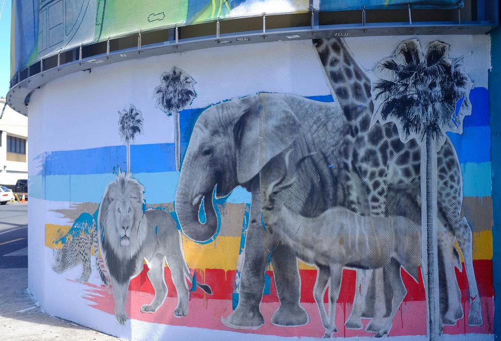 Kakaako Street Murals - 13 Things To Do On Oahu | Kaci Nicole