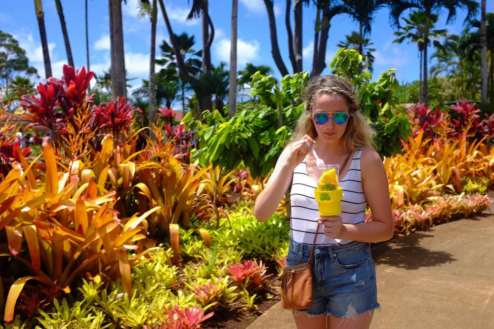 Dole Plantation - 13 Things To Do On Oahu | Kaci Nicole