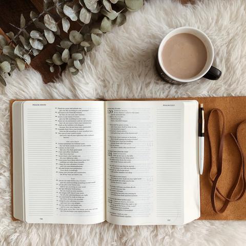 Daily Grace Co. Journaling Bible | Kaci Nicole.jpg