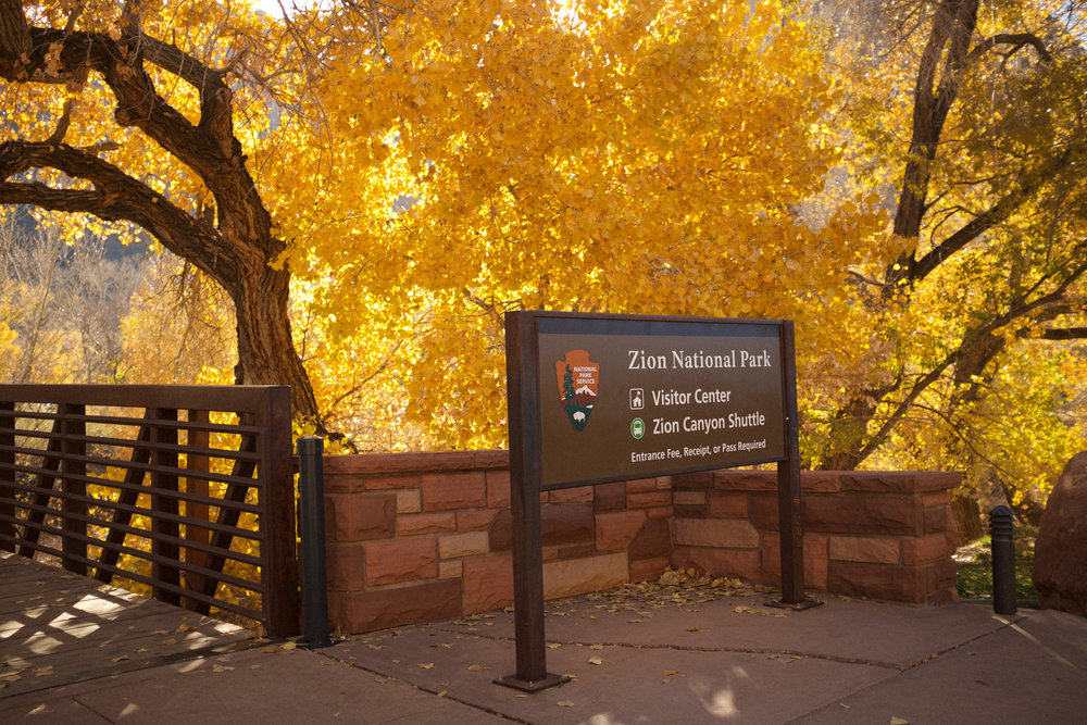 Zion National Park Entrance | Kaci Nicole.jpg