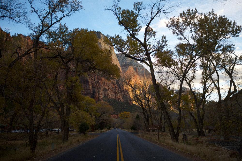 Gorgeous Fall Colors at Zion | Kaci Nicole.jpg