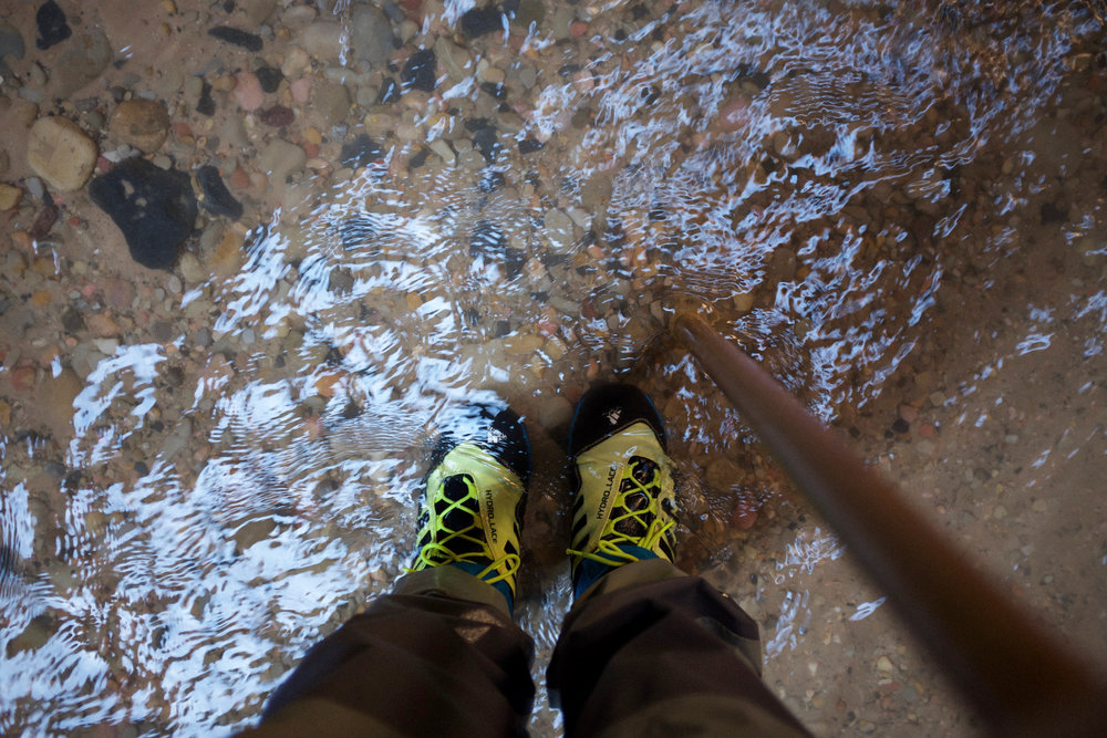 Hiking Stick Zion Outfitters | Kaci Nicole.jpg