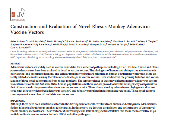 Construction and Evaluation of Novel Rhesus Monkey Adenovirus Vaccine Vectors