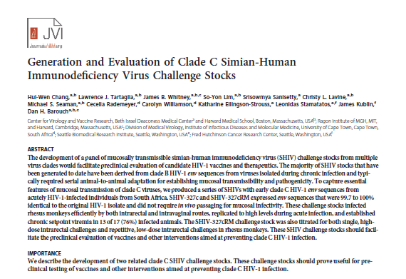 Generation and Evaluation of Clade C Simian-Human Immunodeficiency Virus Challenge Stocks
