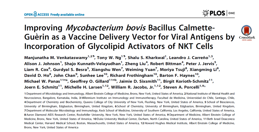 Improving Mycobacterium bovis Bacillus Calmette-Gue` rin as a Vaccine Delivery Vector for Viral Antigens by Incorporation of Glycolipid Activators of NKT Cells