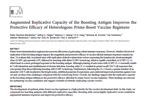 Augmented Replicative Capacity of the Boosting Antigen Improves the Protective Efficacy of Heterologous Prime-Boost Vaccine Regimens