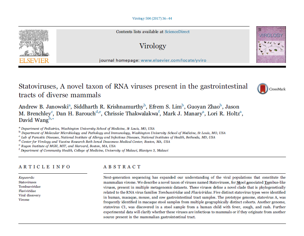 Statoviruses, A novel taxon of RNA viruses present in the gastrointestinal tracts of diverse mammals