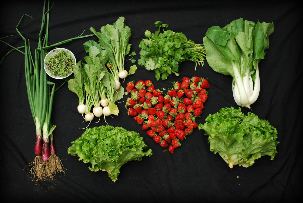 Spring onions, microgreens, salad turnips, flat leaf parsley, green leaf lettuce, bok choy, and three pints of strawberries
