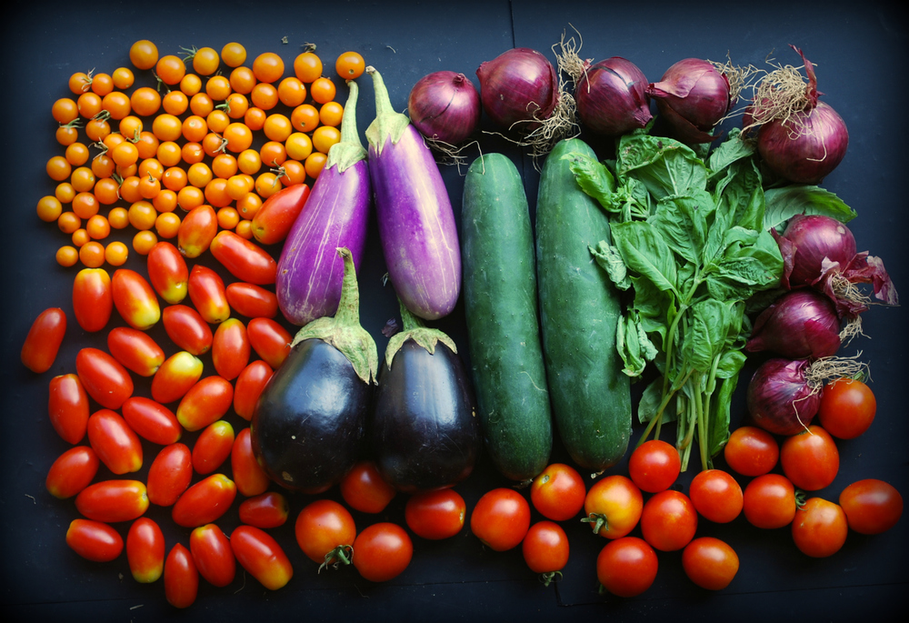 Your Week 17 share includes: globe eggplant, Asian eggplant, cucumber, basil, red onions, and Campari, Juliet and Sungold tomatoes. (Not pictured: bell peppers)