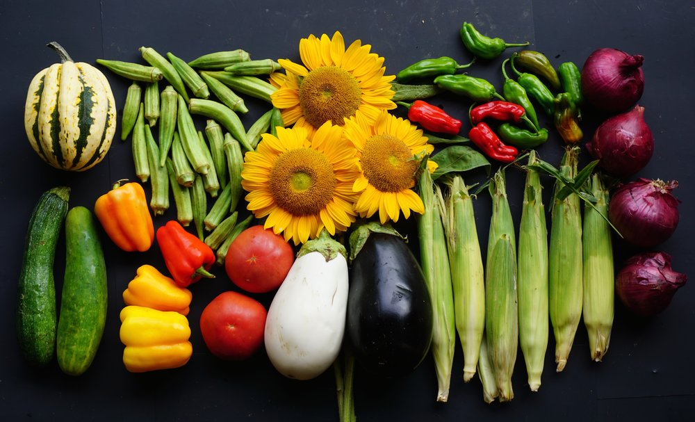 Your Week 16 share includes: spaghetti squash, cucumbers, bell peppers, okra, sunflowers, tomatoes, eggplant, sweet corn, Shishito peppers, and red onions.
