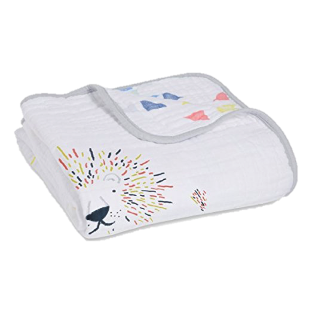 Aden & Anais Dream Blanket, $40