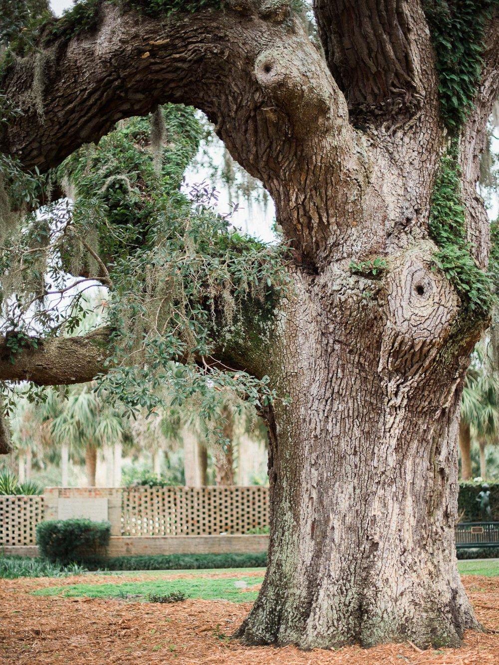 Brookgreen Gardens 71.jpg