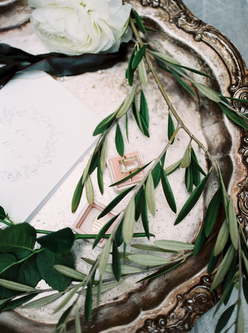 christinadavisphotography+romantic+greenhouse+jardindebuis+styledshoot22.jpg