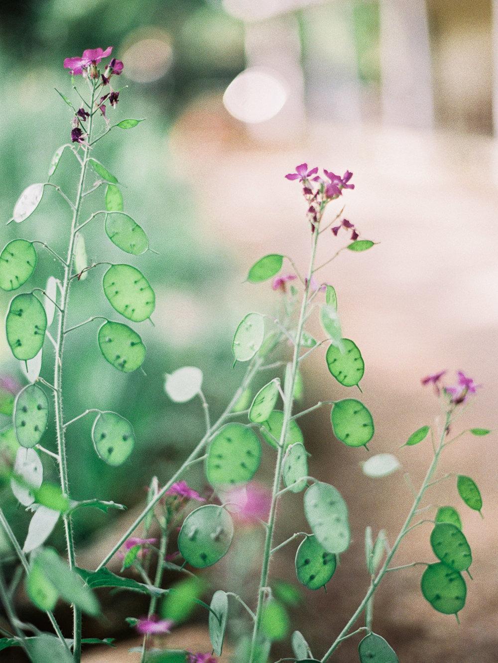 christinadavisphotography-romanticwedding-gardenweddinginspiration20.jpg