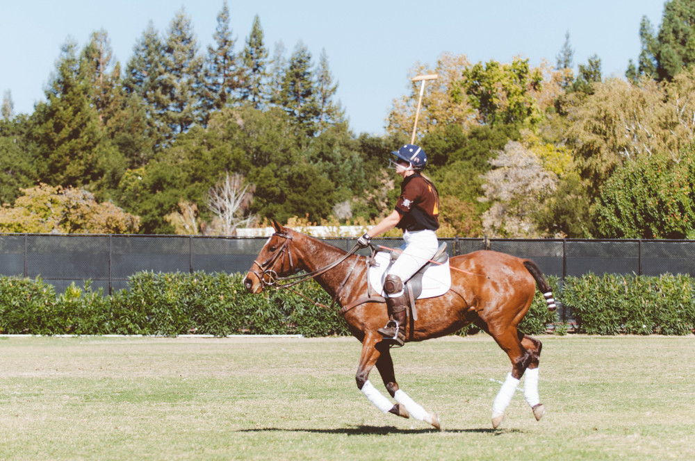 Polo for Lyme benefiting the Bay Area Lyme Foundation / Menlo Park Circus Club / Photographed by Stephen Sun
