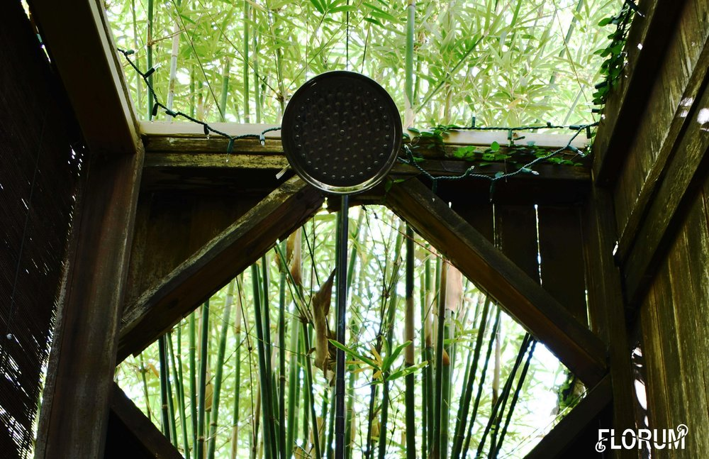 One of my favorite things (not to mention surprise) was seeing the outdoor shower near the pool! Surrounded my bamboo this airy beautiful shower serioursly takes you on a trip to the tropics.