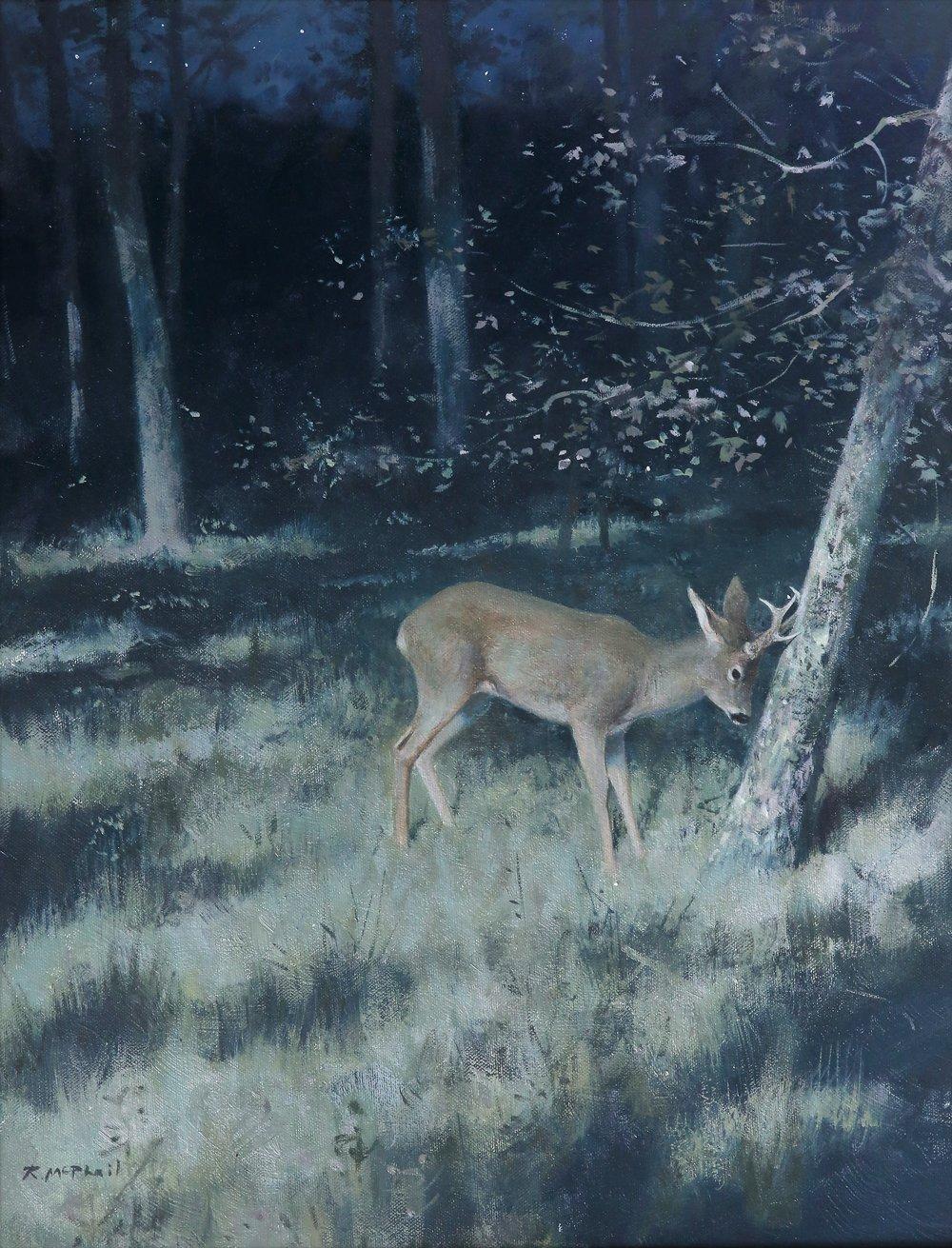 Roe Deer in Moonlight