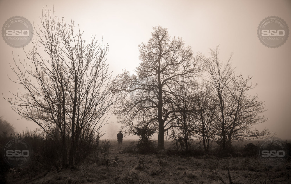 Berinzenne-201411-2.jpg