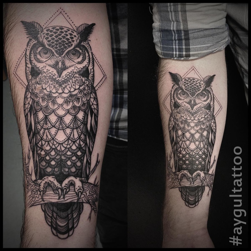 #owl #bird #sketchy #aygultattoo