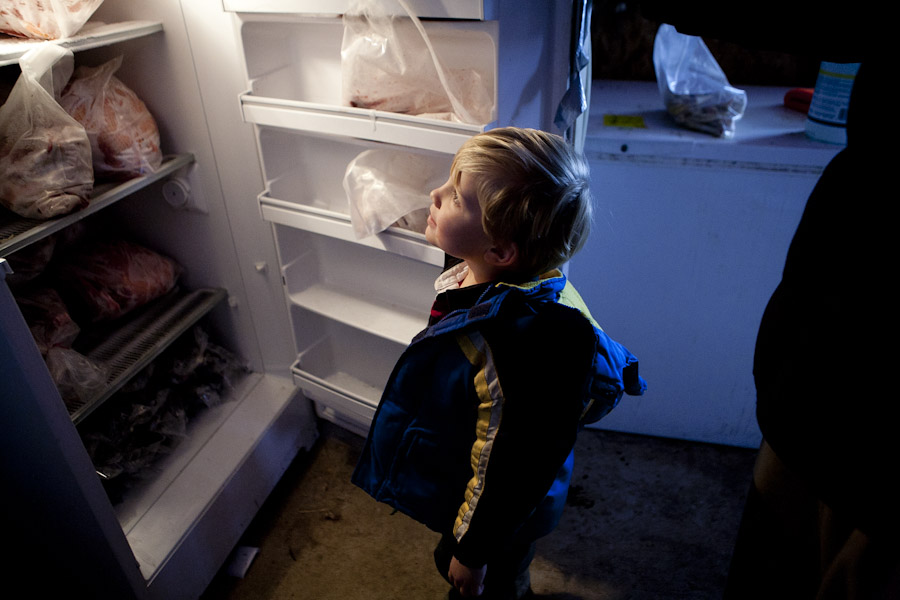 looking in a fridge