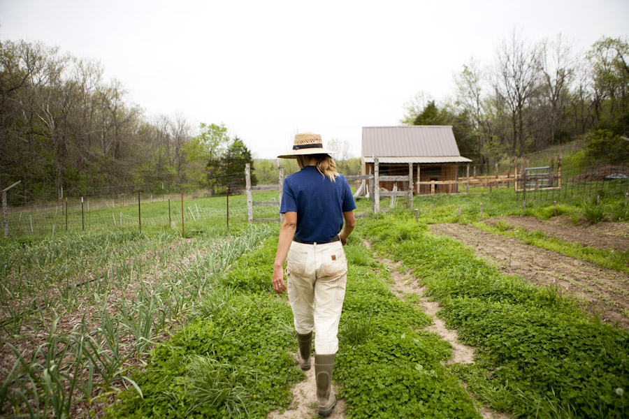 missouri csa farms