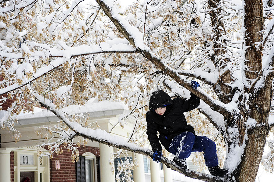 Thomas Watson, 13, comes down from a tree after attempting unsuccessfully to help his mother remove a broken branch from the tree on Wednesday, March 6, 2013, in Staunton.