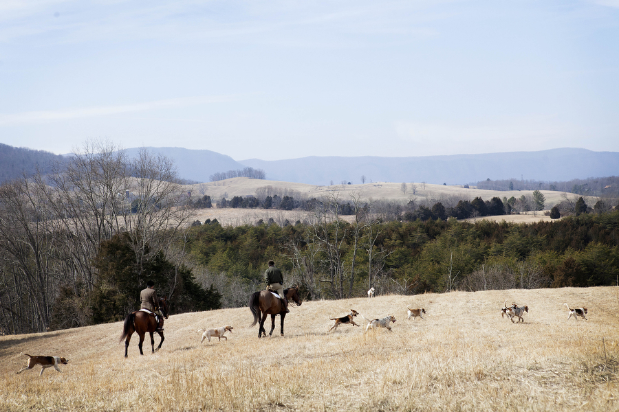 Riders from the Rockbridge Hunt Club can see an expansive view of Rockbridge County during their hunt Saturday, Feb. 23, 2013. Riders in fox hunts appreciate the natural obstacles they have to cross, which can be similar to arena sports like steeplechase.