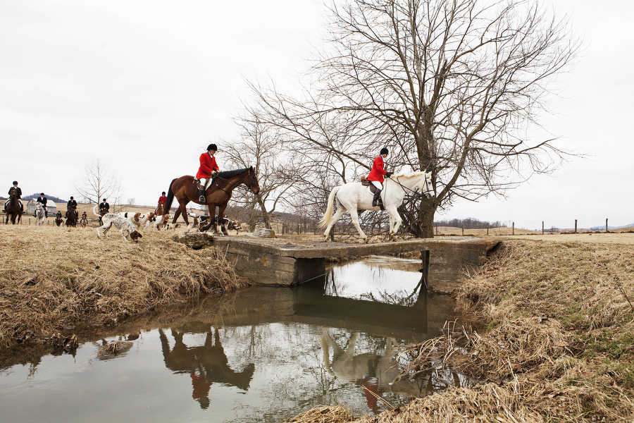 Riders of the Glenmore Hunt Club cross over a bridge on Saturday, Feb. 2, 2013, in Staunton. Virginia has more foxhunts than any other state in the U.S.