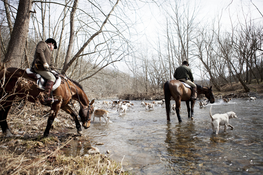 Rockbridge Hunt Club riders cross a creek with the hounds during the start of the hunt on Saturday, Feb. 23, 2013, in Rockbridge County. Riders in fox hunts appreciate the natural obstacles they have to cross, which can be similar to arena sports like steeplechase.