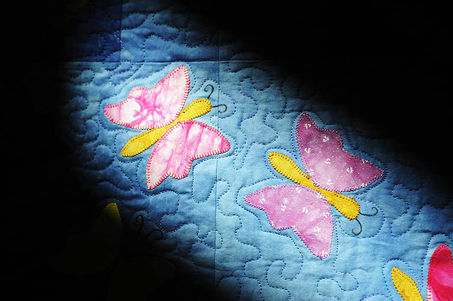 "Light shines on Diana Easley's quilt, ""Spring Breezes,"" which will be up for sale during the Hospice of Shenandoah's quilt auction, ""Quilts of Comfort."" The auction will be held April 13th at Cornerstone Church in Fishersville."