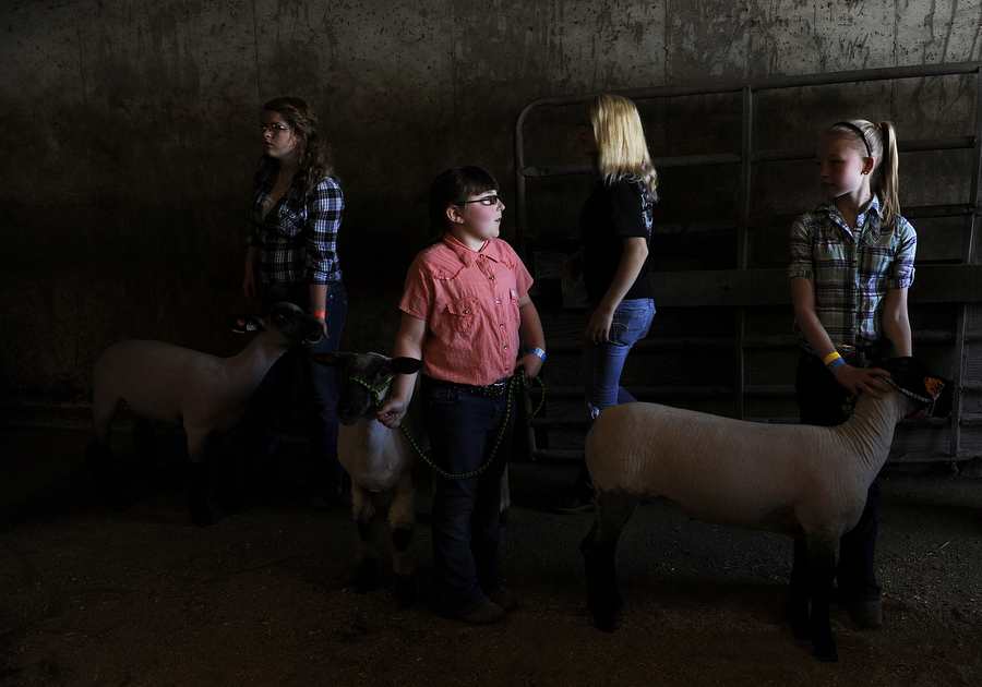 Kids wait to take their lambs out into the showing ring during the Augusta County 4-H and FFA Market Animal Show and Sale on Wednesday, May 1, 2013, in Staunton. This year, the show featured more animals than ever before, even though there were less steers to be shown.