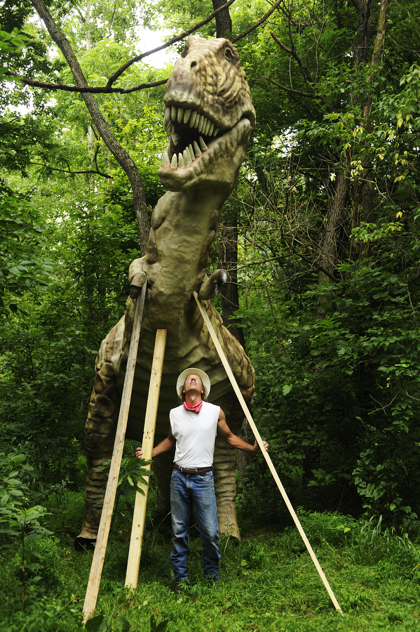 Mark Cline looks up at his tyrannosaurus after installing it along a trail at Grand Caverns on Tuesday, July 9, 2013, in Grottoes. Cline brought four dinosaurs to the park in hopes of eventually expanding the project to increase tourism.
