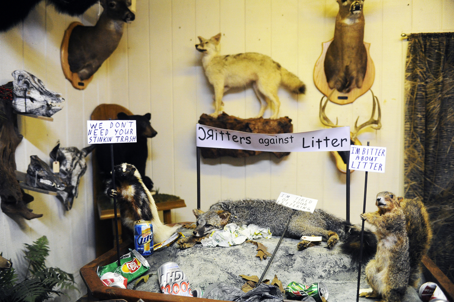 A skunk, coyote and squirrel protest littering in the showroom of Danny Waters' taxidermy studio on Wednesday, Dec. 11, 2013, in Millboro Springs. Waters has been doing taxidermy since the 60s, and prides himself on more creative and humorous taxidermy jobs, such as this one.