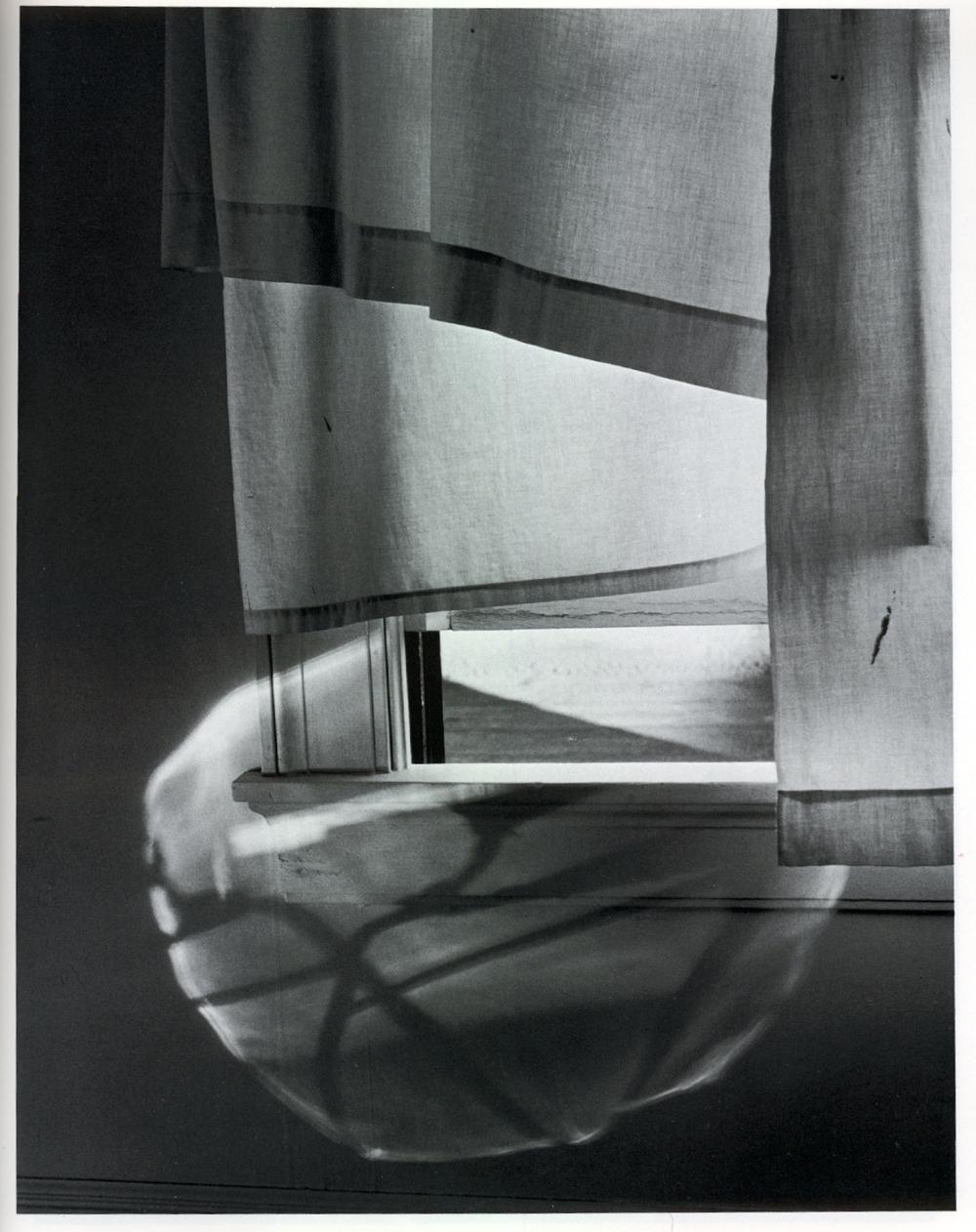 Windowsill daydreaming