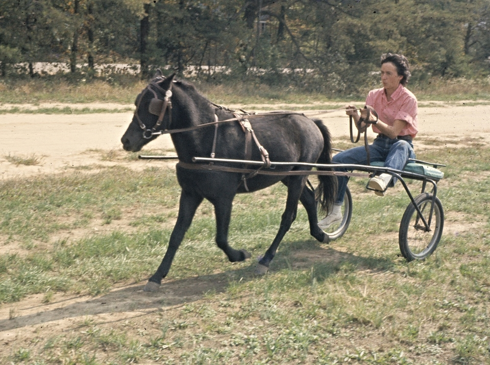 Jennie driving Stoney in 1962.
